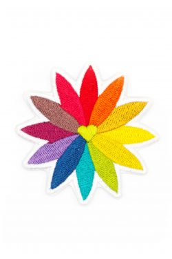rainbow flower patch