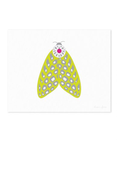 spotted moth art print