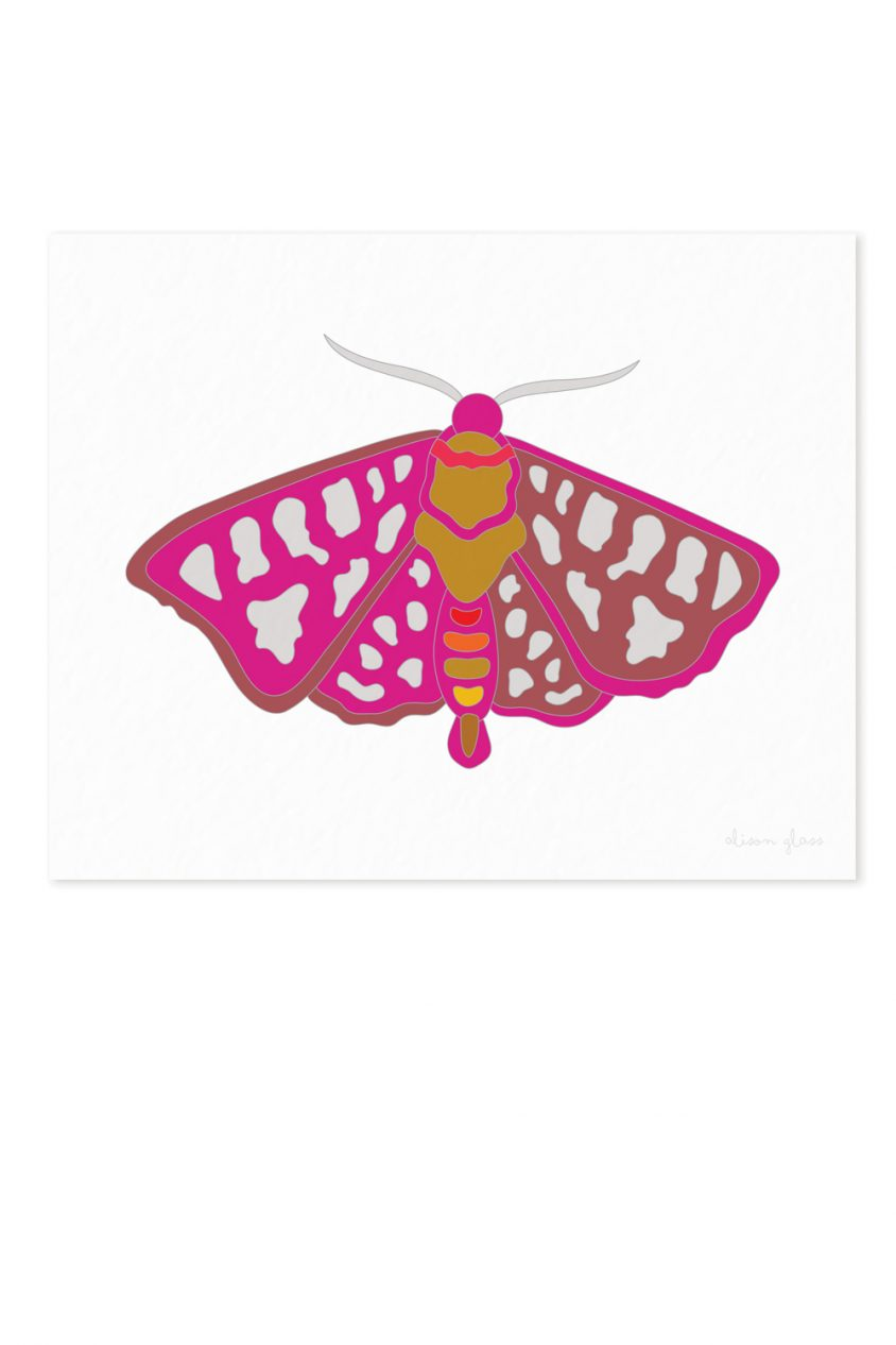 moth in fuschia art print