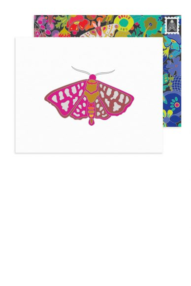 fuchsia moth card